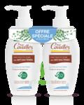 Acheter Rogé Cavaillès Hygiène intime Soin naturel Toilette Intime Anti-bactérien 2Fl/250ml à BIARRITZ